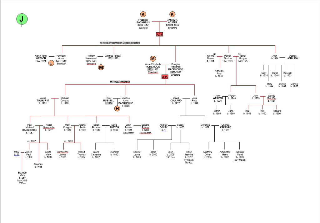 family tree template for word. blank family tree template