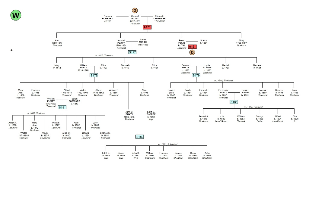 format for family trees